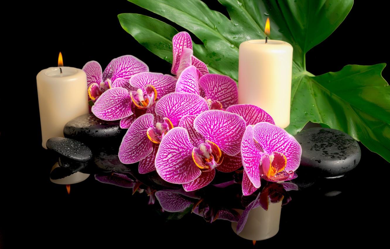 Обои листики, орхидея, спа камни, Полотенце. Разное foto 15