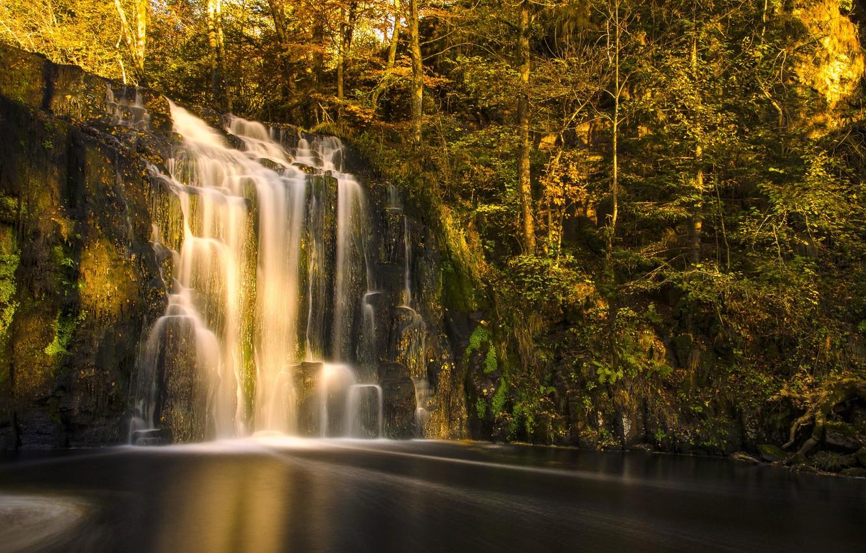 картинки леса с водопадом шов