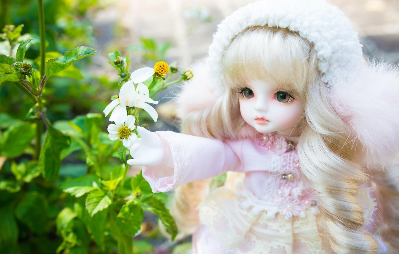 Фото обои цветы, игрушка, кукла