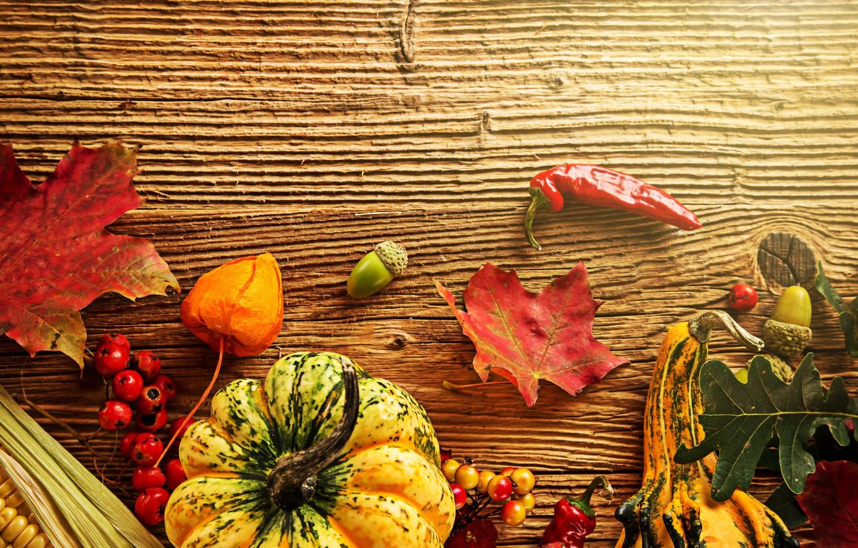 Фото обои осень, листья, ягоды, дерево, кукуруза, урожай, тыква, перец, желуди