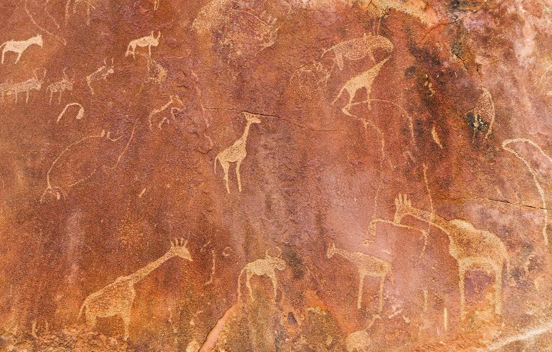 Фото обои стена, рисунок, текстура