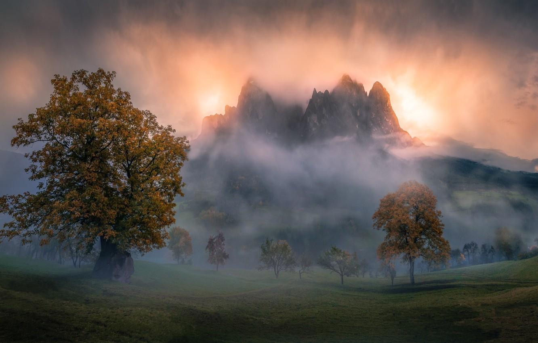 Фото обои осень, горы, туман, утро