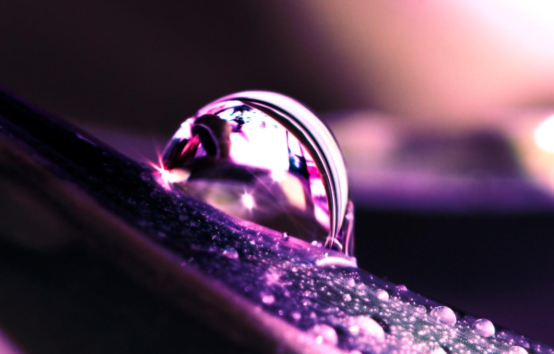Фото обои вода, капельки, сиреневый, капля, Лист