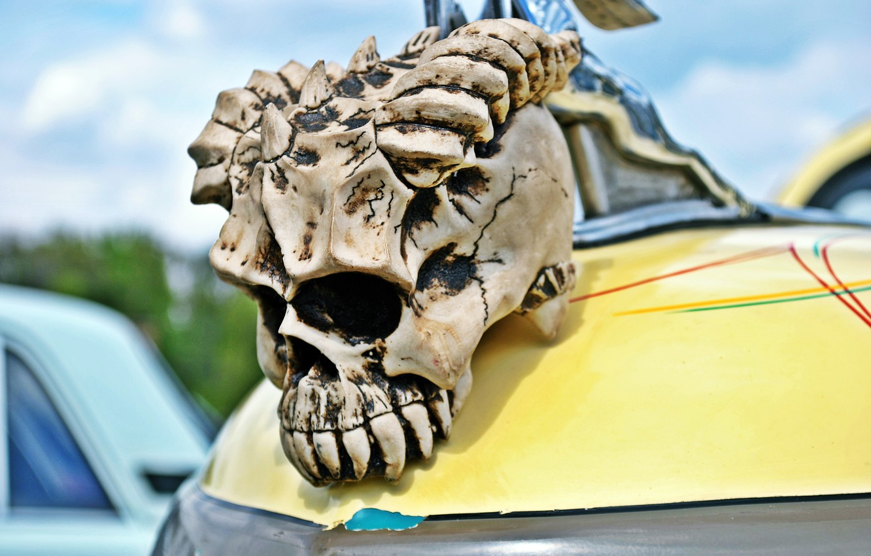 черепа на машине фото картинки