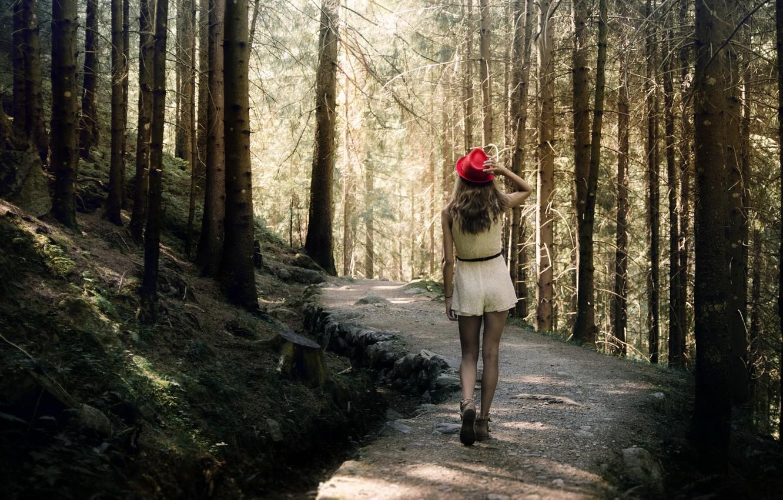 Прогулка Девушки В Лесу