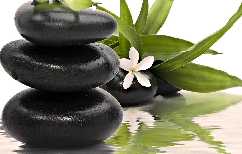 Обои Spa, цветы, spa stones, орхидеи, Вода, Спа камешки. Разное foto 19