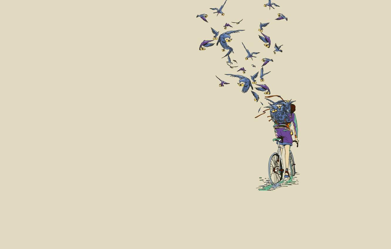 Фото обои велосипед, минимализм, голуби, почтальон, Art, письма, послания