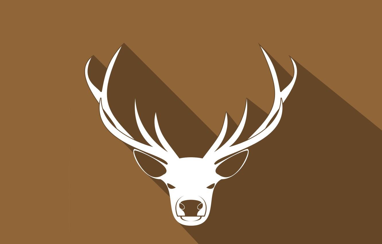 Фото обои природа, минимализм, олень, рога, коричневый