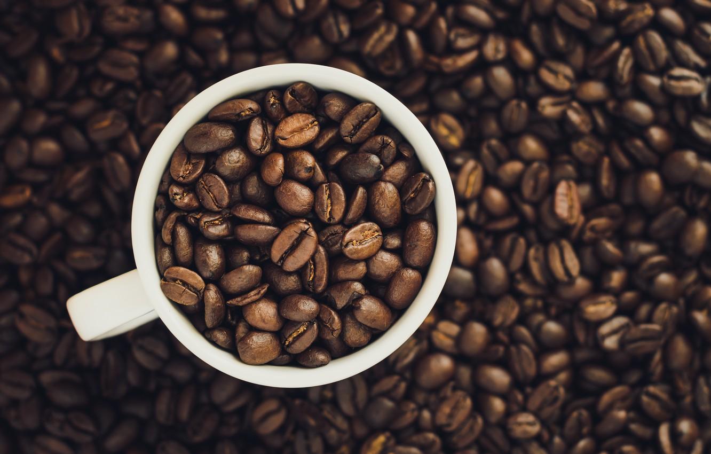 Фото обои Кофе, чашка, зёрна
