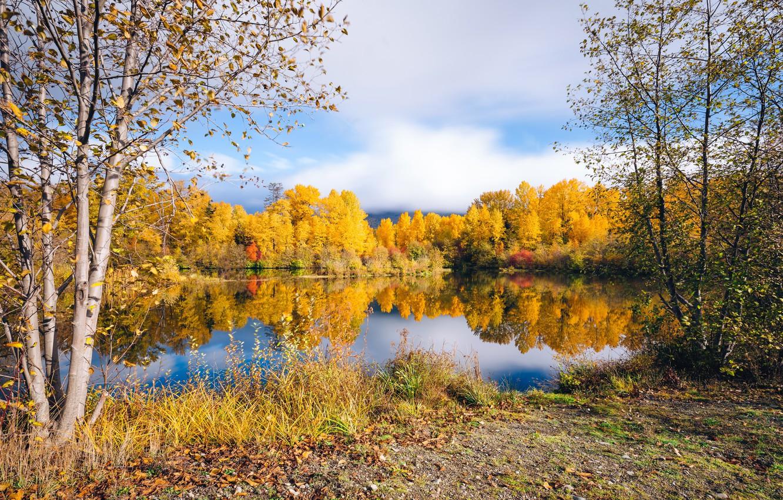 Картинки осень золотая пейзаж на рабочий стол