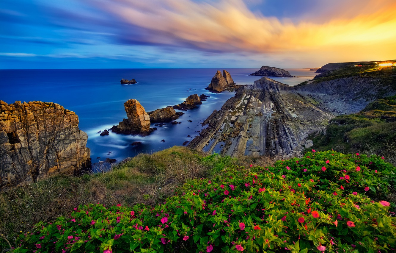Фото обои море, закат, цветы, скалы, побережье, Испания, Spain, Costa Quebrada, Бискайский залив, Cantabria, Кантабрия, Bay of …