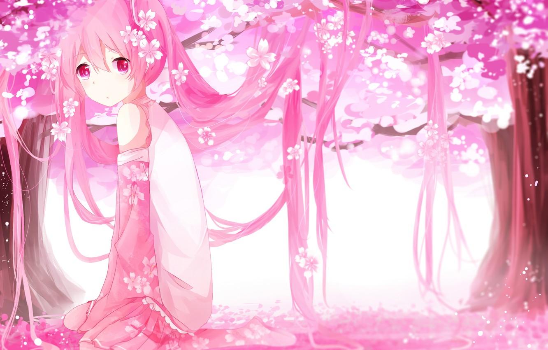 Фото обои девушка, деревья, цветы, аниме, лепестки, сакура, арт, vocaloid, sakura miku