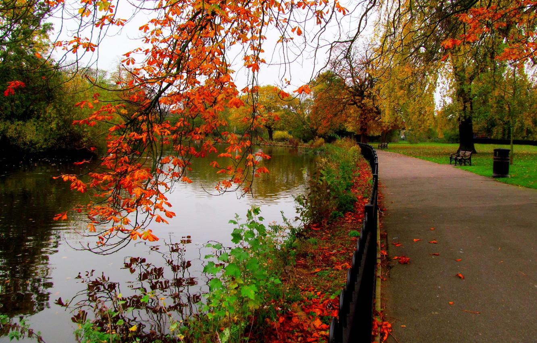 Фото обои осень, лес, небо, листья, вода, деревья, скамейка, природа, парк, река, вид, hdr, прогулка, forest, аллея, …