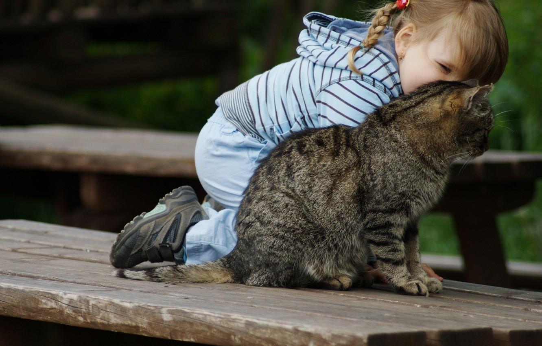 Фото обои кошка, кот, улыбка, ребенок, девочка, girl, smile, cat, косичка, дитя, baby