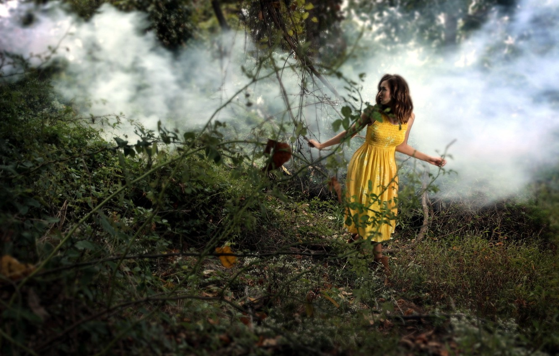 Фото обои лес, девушка, дым, ситуация