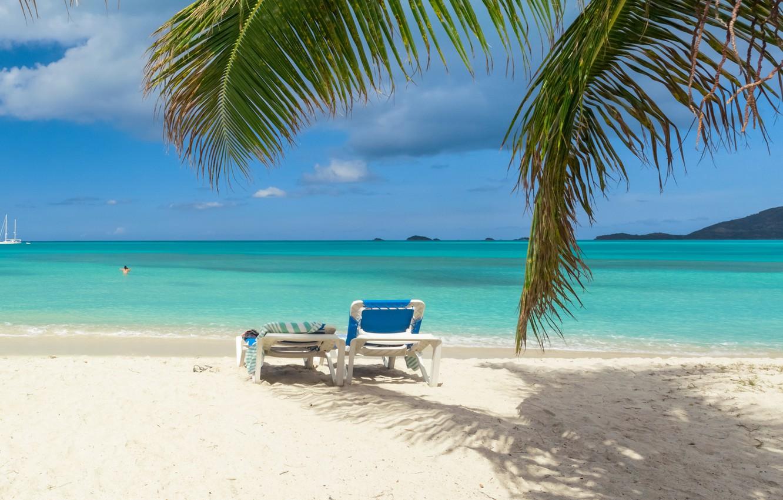 Фото обои песок, море, пляж, пальмы, берег, summer, beach, sea, sand, shore, paradise, palms, tropical