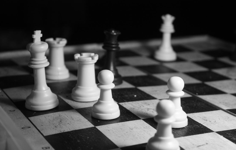 Фото обои белое, шахматы, черное
