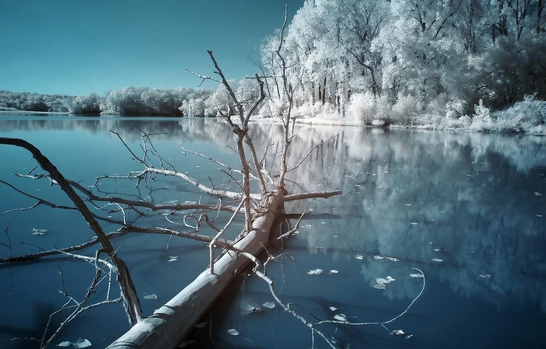 Фото обои холод, зима, ночь, озеро