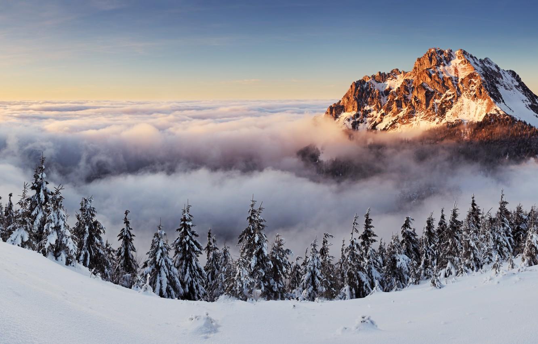 Фото обои деревья, пейзаж, природа, гора, panorama, Slovakia