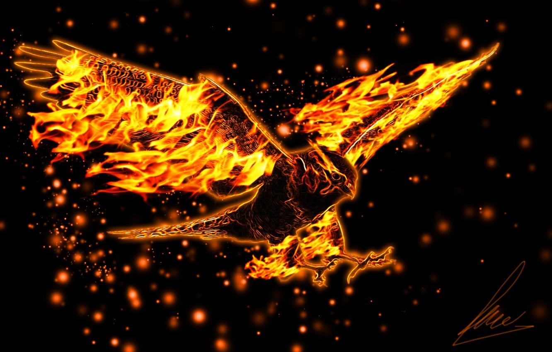 Фото обои орел, крылья, полёт, горящий
