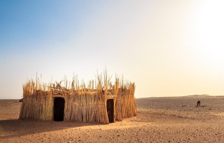 Фото обои природа, пустыня, хижина, Morocco, the Western Sahara Desert