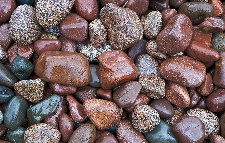разновидности появляются на мшонке твердие камушки фото если необходимо
