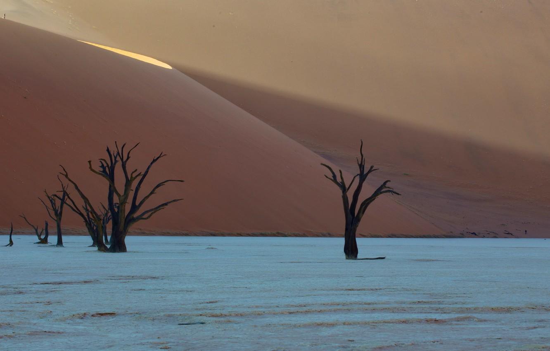 Фото обои desert, africa, dunes, Deadvlei, namibia