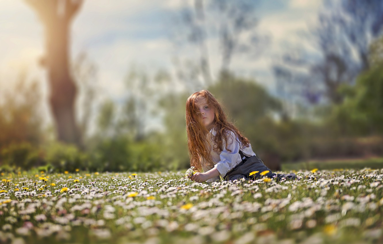 Фото обои взгляд, цветы, настроение, волосы, луг, девочка, рыжая, рыжеволосая