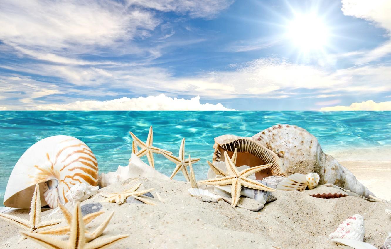 знаю, открытки море пляж солнце имеет множество