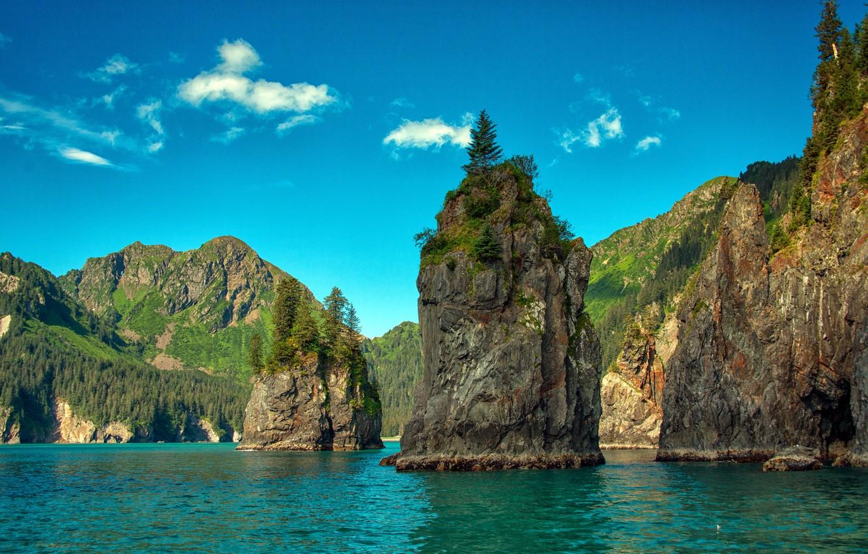 Фото обои лес, деревья, горы, скалы, США, Alaska, фьорды, Kenai Fjords National Park