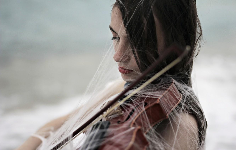 Фото обои девушка, скрипка, паутина