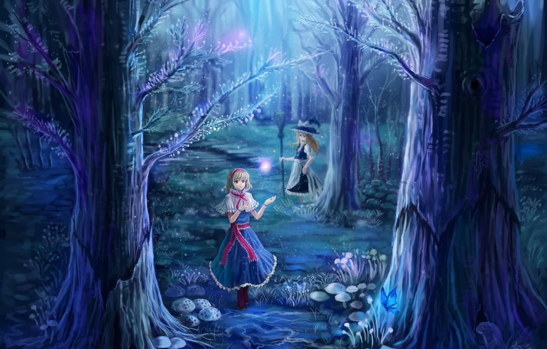 Фото обои лес, деревья, ночь, природа, девушки, ветви, магия, бабочка, грибы, шляпа, арт, ведьма, метла, touhou, alice …