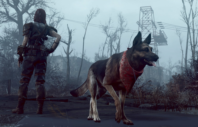 Фото обои собака, Fallout-4, He got your back