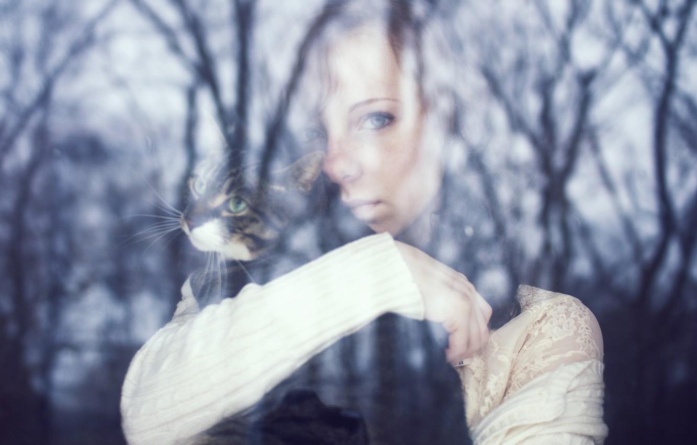 Фото обои кошка, кот, взгляд, стекло, листья, девушка, деревья, задумчивость, ветки, лицо, отражение, фон, дерево, животное, widescreen, …