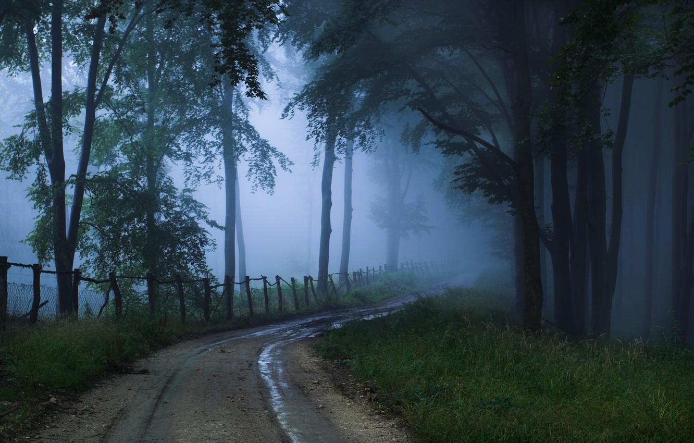 Фото обои дорога, туман, неизвестность