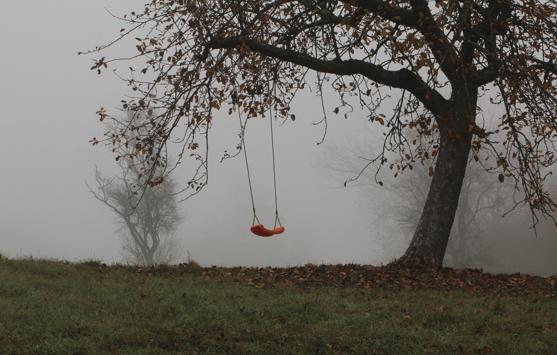 Фото обои деревья, туман, качели, Осень, trees, autumn, fog, swing, mist