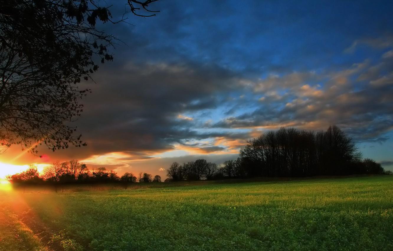 Фото обои поле, лес, ночь, восход