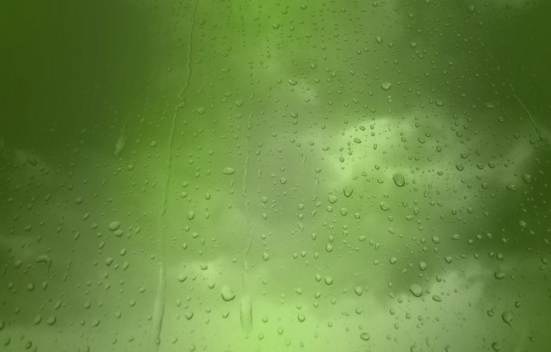 Фото обои капельки, дождь, Зеленый фон