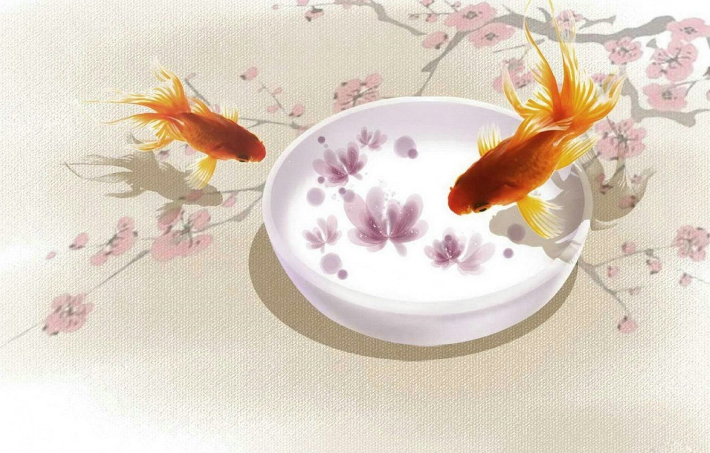 Фото обои рыбки, сакура, арт, золотые рыбки, ветвь
