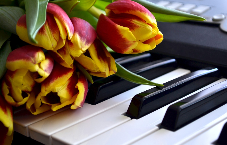 нотки клавиши цветы картинки сочетании рубинами