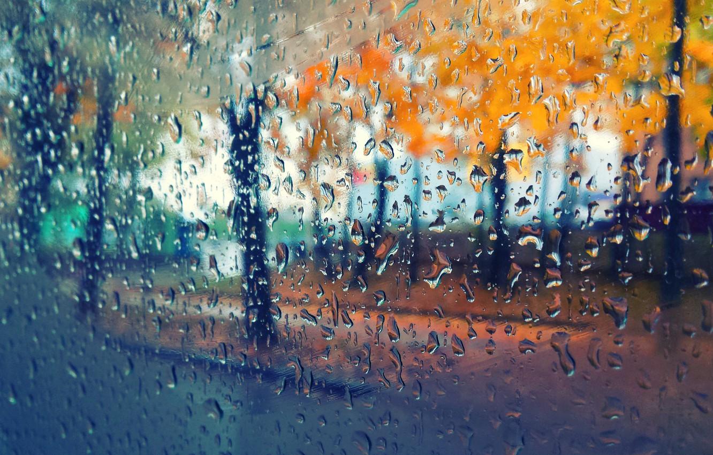 расчет фотообои дождь на рабочий стол ганапольский один самых