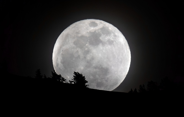 Фото обои небо, луна, силуэт, контуры