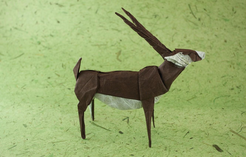 Фото обои зеленый, green, рога, horns, оригами, антилопы, origami, brown antelope, бурые антилопы, antelope