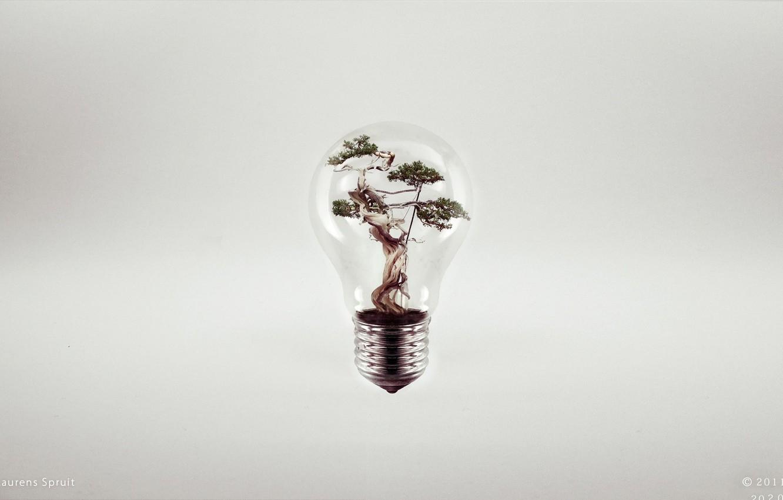 Фото обои креатив, дерево, лампа