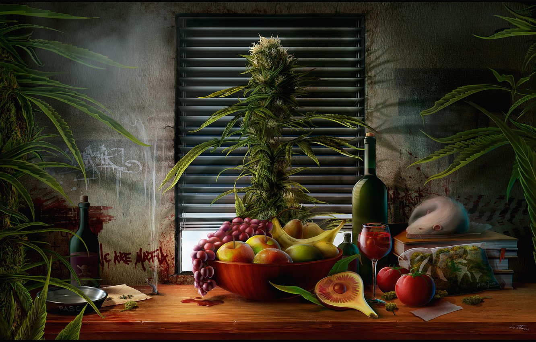Фото обои трава, стол, вино, яблоки, книги, куст, бутылка, пакет, окно, тарелка, виноград, натюрморт, банан, груши, крыса, …