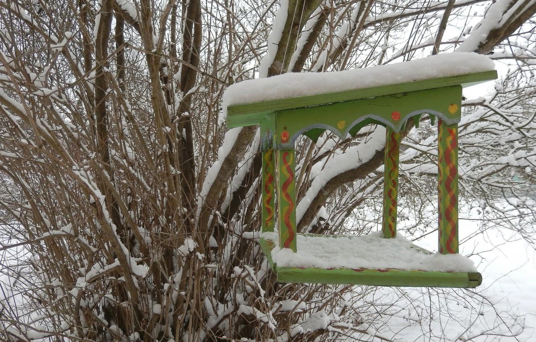 Фото обои зима, снег, фон, widescreen, обои, wallpaper, кусты, широкоформатные, background, красивые обои, обои на рабочий стол, …