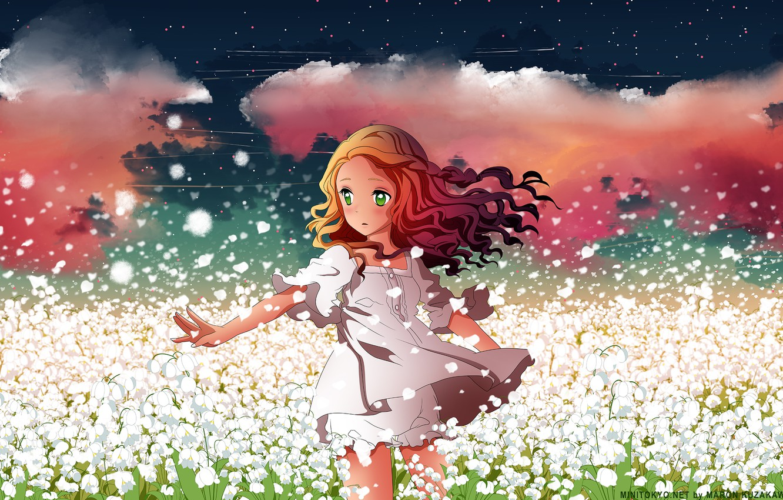 Фото обои поле, небо, девушка, звезды, облака, цветы, аниме, лепестки, арт, h2so4, kuzakawe maron