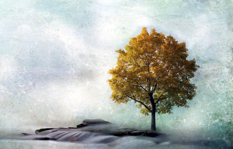 Фото обои пейзаж, стиль, дерево
