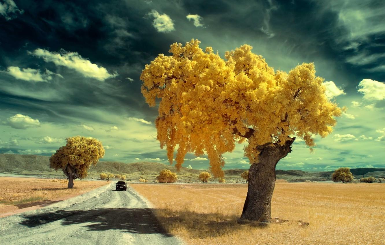Фото обои Испания, sky, yellow, tree, Canon, Spain, infrared, journey, España, trip, Cuenca, infrarrojo, Castilla la mancha, …
