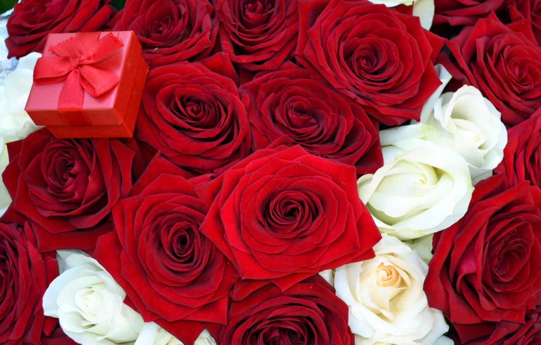 Фото обои цветы, розы, букет, красная, коробочка, предложение